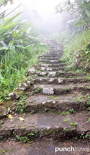 mt-scenery-steps-into-clouds