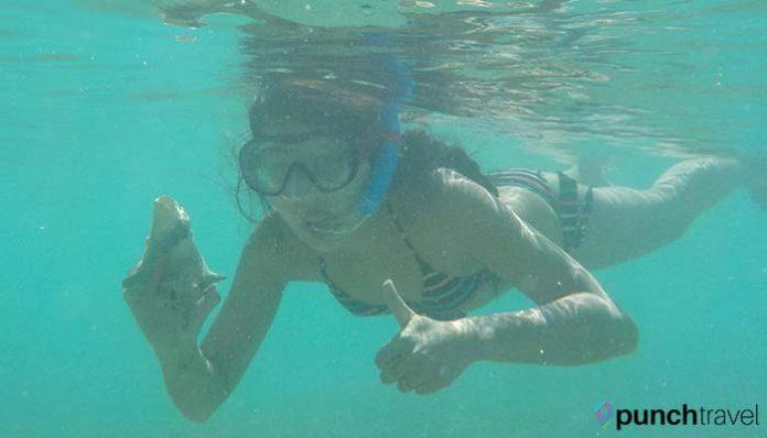 saint-martin-scuba-diving-snorkeling