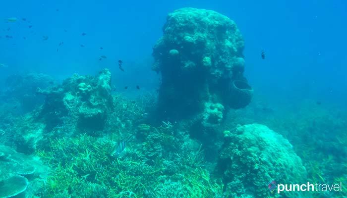 redang_island_pulau_penang2-8