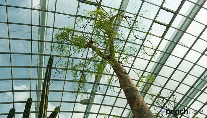 singapore_gardens_bay-1