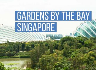 singapore_gardens_bay-top