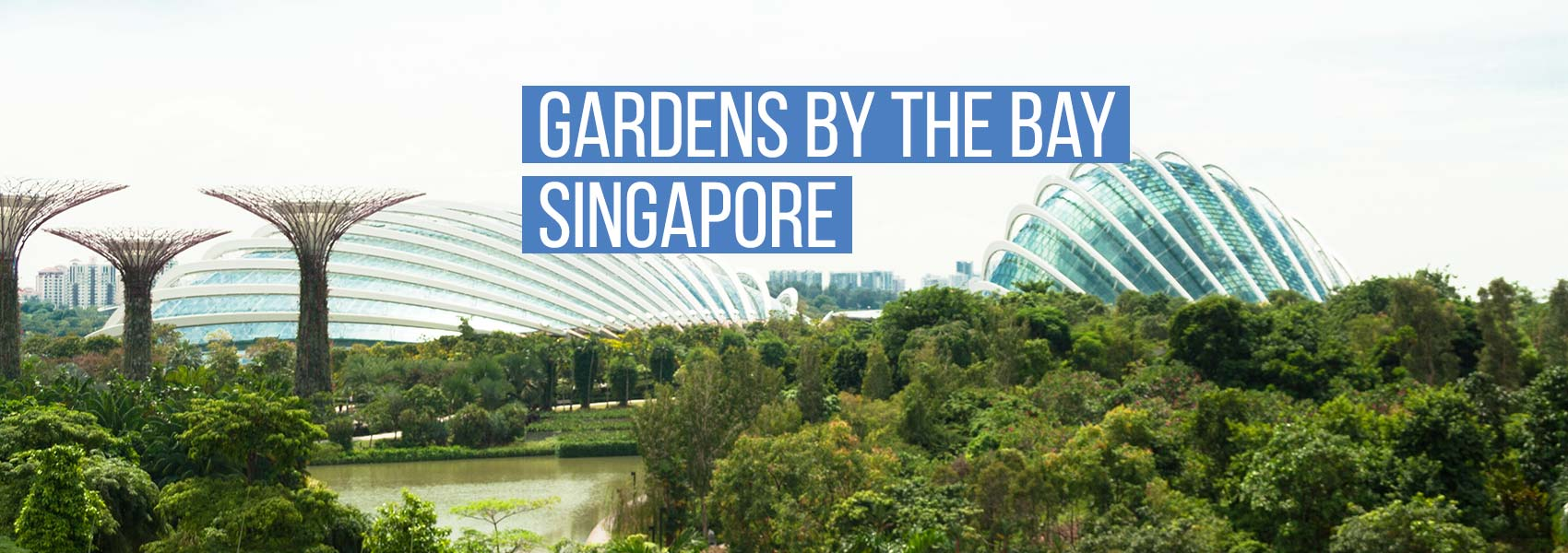Gardens By The Bay E Ticket Flower Dome Cloud Forest Sahabat Tour Travel Malang