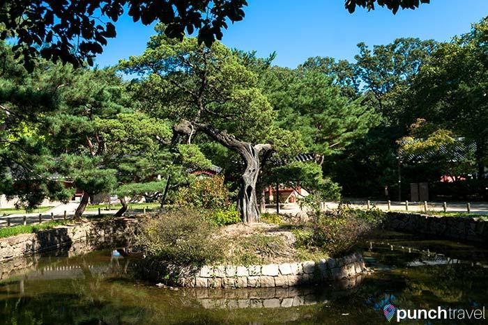 grand_palaces_seoul-17