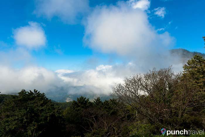 alishan_forest_taiwan-10
