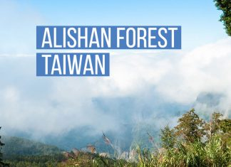 alishan_forest_taiwan-top