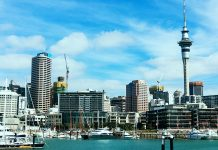 weekend_auckland-ntop