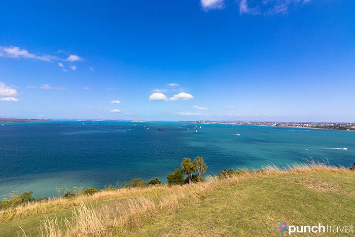 devonport_new_zealand-6