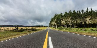 new_zealand_road_trip-top