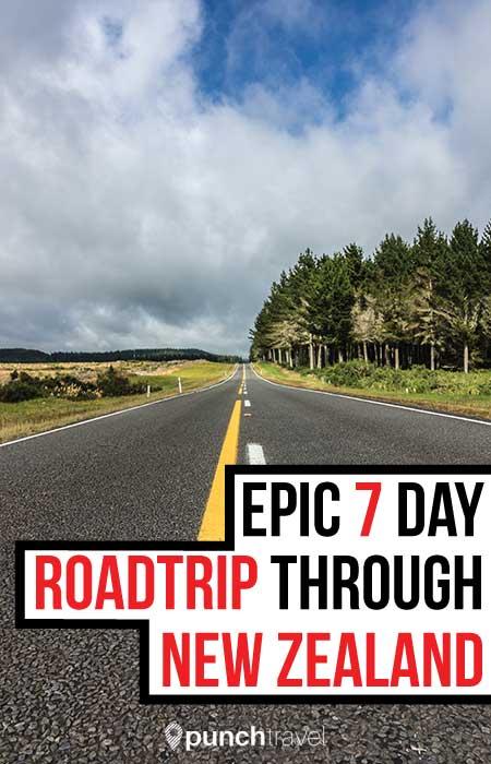 new_zealand_road_trip