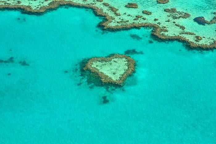 brisbane_cairns_australia-8